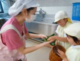 野菜収穫1